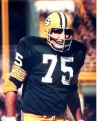 Forrest Gregg Green Bay Packers LIMITED STOCK 8X10 Photo