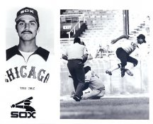 Todd Cruz Chicago White Sox LIMITED STOCK Comes In A Top Load 8X10 Photo