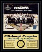 Penguins 2009 Full Team Sit Down Stanley Cup Champions 12x15 MATTE BLACK Plaque