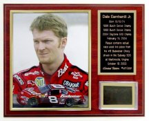 Dale Earnhardt Jr. Tire Plaque