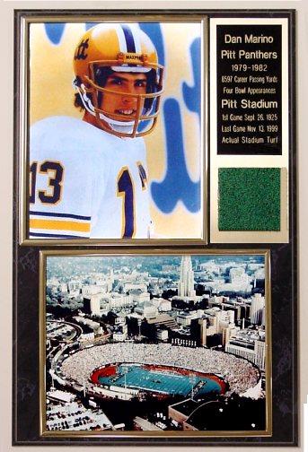 Dan Marino Pitt Stadium Turf Plaque