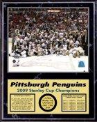 Penguins 2009 Celebration Team Stanley Cup Champions 12x15 BLACK MARBLE STYLE Plaque