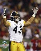 Troy Polamalu Super Bowl 43 Celebrates Win LIMITED STOCK Steelers 8x10 Photo