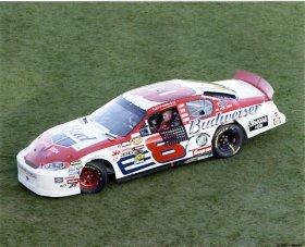 Dale Earnhardt Jr. 2004 Daytona LIMITED STOCK 8X10 Photo