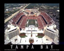 A1 Raymond James Stadium Aerial Tampa Bay 8x10 Photo