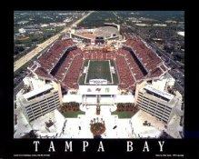 A1 Raymond James Stadium Aerial Tampa Bay 8x10 Photo
