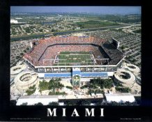 A1 Pro Players Stadium Aerial Miami Dolphins 8x10