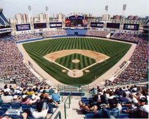 N2 Comiskey Park Chicago White Sox 8X10