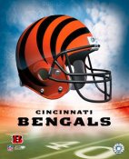 Cincinnati A1 Bengals Team Helmet Photos