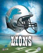 Detroit A Lions Team Helmet 8x10 Photo