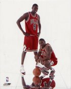 Luol Deng & Ben Gordon LIMITED STOCK Chicago Bulls 8X10