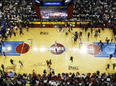 The Palace At Auburn Hills Celebration after Win 8X10 Photo LIMITED STOCK