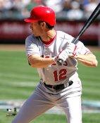 Steve Finley Anaheim Angels 8X10