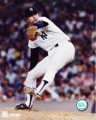 Rich Gossage NY Yankees Goose Gossage SATIN 8X10 Photo