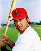 Gary Gaetti St. Louis Cardinals 8X10