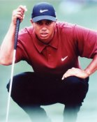 Tiger Woods 8X10 Photo LIMITED