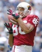 Bryan Gilmore Arizona Cardinals 8X10