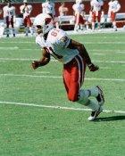 Frank Sanders Arizona Cardinals 8X10