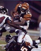 Chris Perry Cincinnati Bengals 8X10