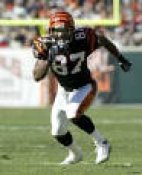 Kelly Washington Cincinnati Bengals 8X10
