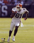 Quincy Morgan Cleveland Browns 8X10