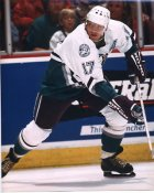 Jarri Kurri Anaheim Mighty Ducks 8x10 Photo