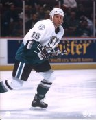 Warren Rychel Anaheim Mighty Ducks 8x10