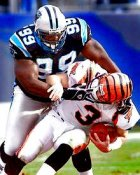 Brenston Buckner Carolina Panthers 8X10