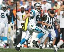Ricky Proehl Carolina Panthers 8X10