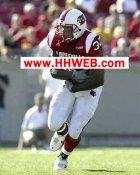 Eric Shelton Louisville Cardinals 8X10 Photo