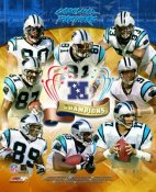 Carolina Panthers NFC Champs 8X10