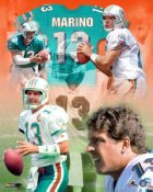 Dan Marino Legends Miami Dolphins 8X10