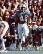 Paul Warfield Miami Dolphins 8X10 Photo