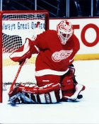Mike Vernon Detroit Red Wings 8x10 Photo