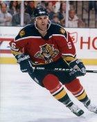 Jason Wooley Florida Panthers 8x10