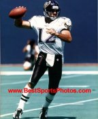 Vinny Testaverde Baltimore Ravens 8X10