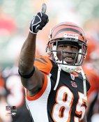 Chad Johnson LIMITED STOCK Cincinnati Bengals 8X10 Photo