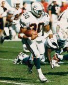 Bernie Parmalee Miami Dolphins 8X10 Photo