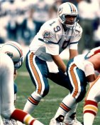 Scott Mitchell Miami Dolphins 8X10