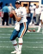 Steve Deberg Miami Dolphins 8X10 (CLON)