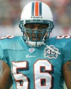 Derrick Pope Miami Dolphins 8X10 Photo