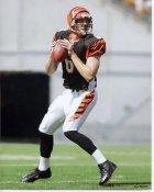 Craig Krenzel Cincinnati Bengals 8X10 Photo