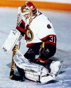 Peter Sidorkiewicz Ottawa Senators 8x10 photo