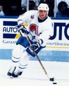 Sylvain Lefevbre Quebec Nordiques 8x10 Photo