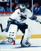 Brian Hayward 2 San Jose Sharks 8x10 Photo