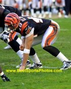 Brad St. Louis Cincinnati Bengals 8X10 Photo