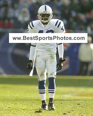 Jason David Indianapolis Colts 8X10 Photo