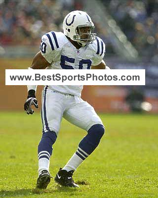 David Thornton Indianapolis Colts 8X10 Photo