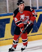 Steve Sullivan AHL Albany River Rats LIMITED STOCK 8x10 Photo