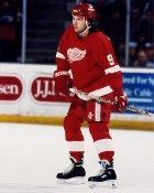 Mike Casselman AHL Adirondack Red Wings 8x10 Photo